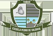 Escuela Pedro de Valdivia